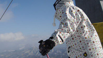 sports_skiimg